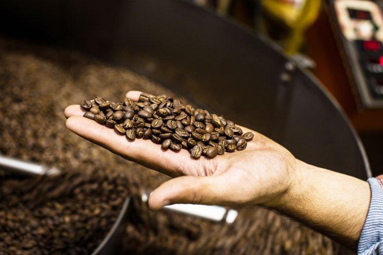 Holding Roasted Coffee Diedrich Roaster